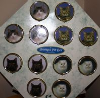 Cat Pill Boxes